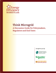 Think Microgrid Cover 250