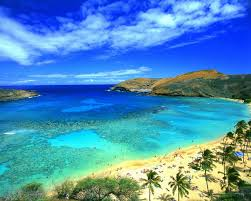 Are Hawaii's Microgrids Our Energy Future?
