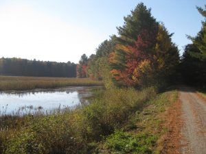 """Missisquoi Valley Rail Trail Swanton Vermont"" by Elliot Rosewater"