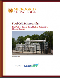 fuel cell microgrids