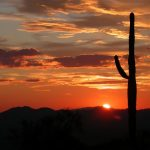 Microgrids and Energy Storage Helped Arizona Utility Prevail on Hot & Dark Days