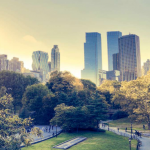 New York Paves the Way to Understanding Microgrid Utility Requirements