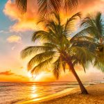 Caribbean Ripe for DER and Microgrid Development but Needs Financial Boost