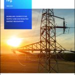 Bundling Competitive Supply and Distributed Energy Resources