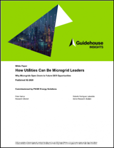 Distributed Energy Resource utility microgrids