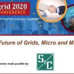 The Future of Grids, Micro and Macro?